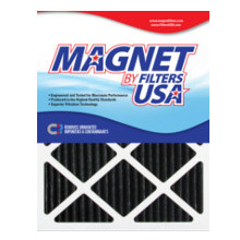 Magnet Odor, Pollen & Allergy Filter 20x20x1""